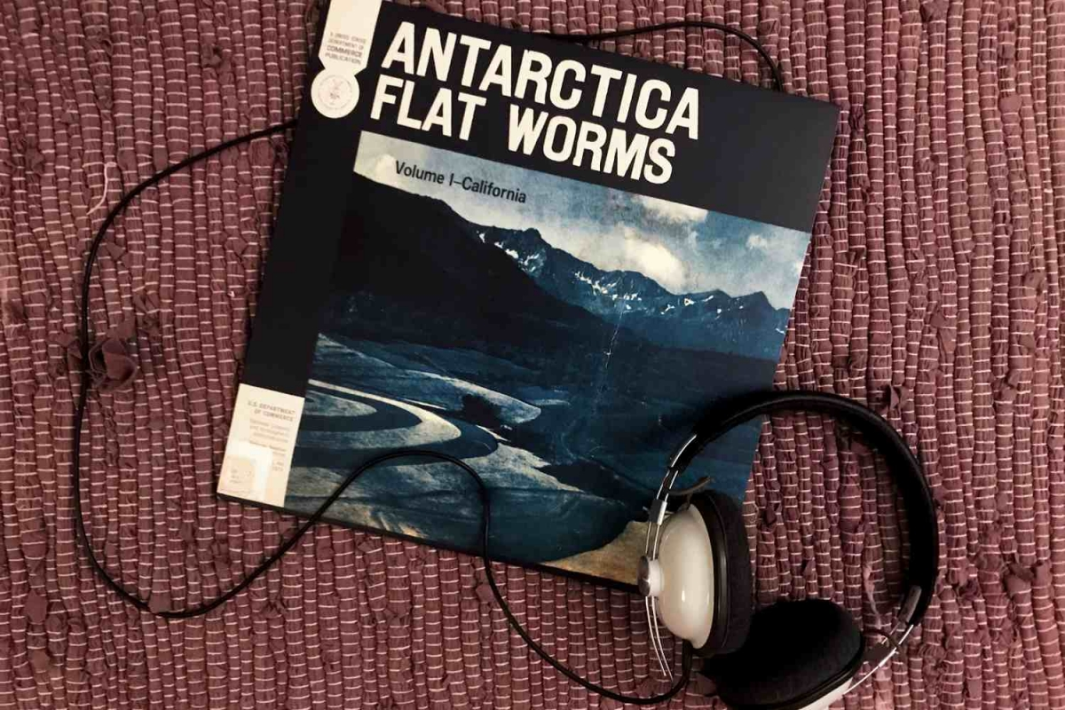 Flat Worms - Antarctica (God Records, 2020)