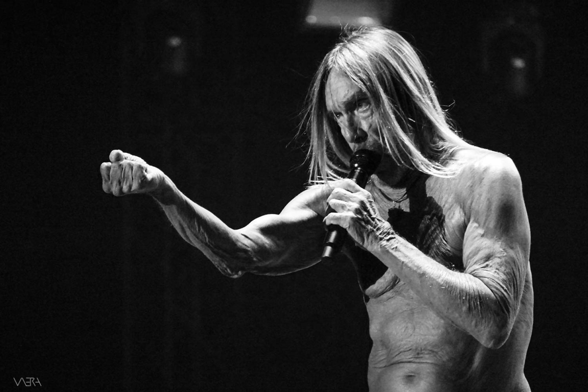 Iggy Pop/James/Shame/The Noise Figures/The Dark Rags LIVE@Release Festival, 8/6/2019