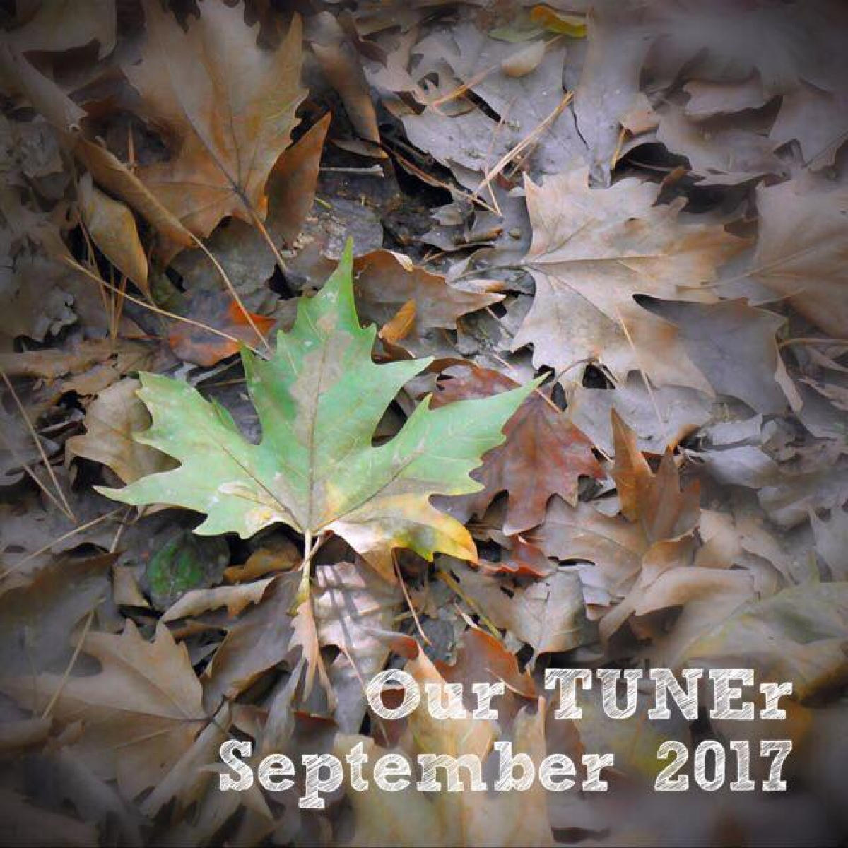 #OurTUNEr - September 2017